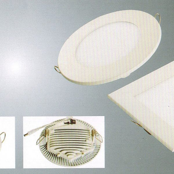 LED Downlight02